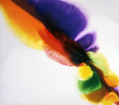 Phenomena Tibetan Flange, 1973, acrylic on canvas 66X74 in