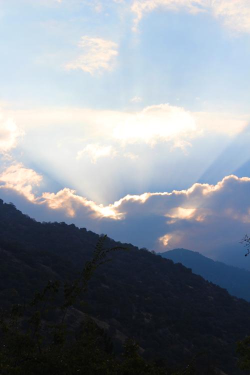 """Early Morning"" photograph © Elsah Cort"